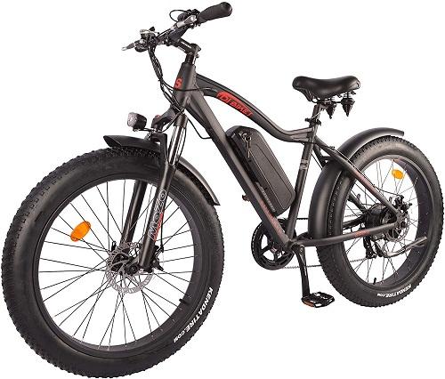 1. DJ Fat bike 750W 48V 13A Power electric bike